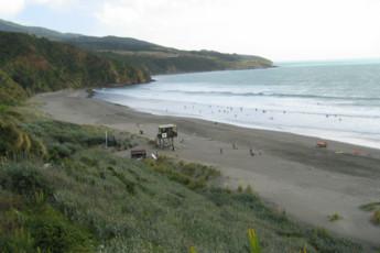 YHA Raglan : Beach Local to Raglan YHA - Solscape Eco Retreat Hostel, New Zealand