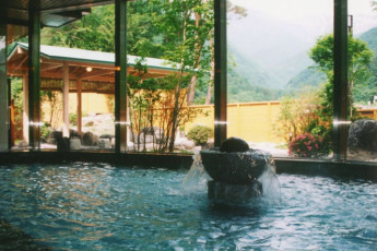 Nagano Pref - Komagane YH : Indoor Pool at Nagano Pref - Komagane Youth Hostel, Japan