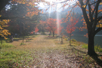 Nagano Pref - Komagane YH : Landscape at Nagano Pref - Komagane Youth Hostel, Japan in Autumn