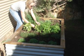 Augusta YHA : Garden at Augusta Hostel, Australia