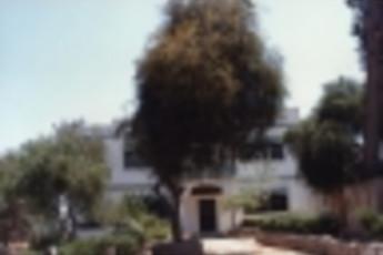 Zefta - Pines Hostel : Vista exterior de Zefta - pinos hostal, Liban