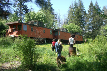 HI - Shuswap Lake : Exterior view of cabin at HI-Shuswap Lake hostel in Canada