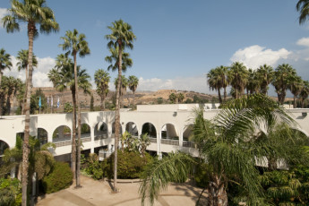 Karei Deshe : Courtyard at Karei Deshe hostel Israel