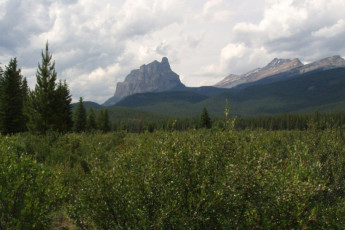HI - Castle Mountain Wilderness Hostel : Castle Mountain