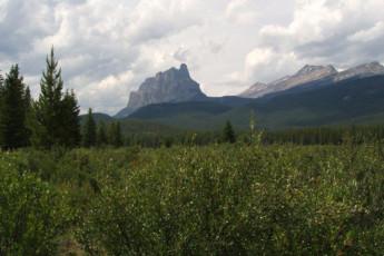 HI - Castle Mountain Wilderness Hostel : Castle Mountain