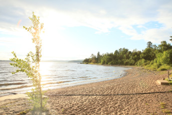 HI  Davidson (Esprit Rafting) : Gäste einer geselligen Bar des HI-Spirit Hostel in Kanada