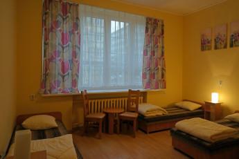 Kraków - Oleandry : Room