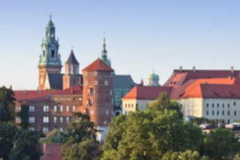 Kraków - Oleandry :