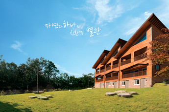 Timber House (Seohae Youth Hostel) :