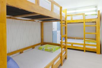 Wow-Hills Guest House (Hongdae) :