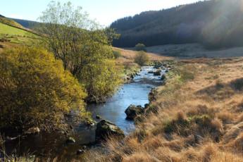 YHA Dolgoch : River beside the hostel