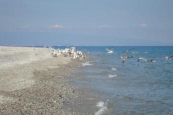 Guardavalle Marina - YH Borgorosso :
