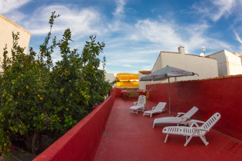 Bed & Breakfast La Laguna : terraza