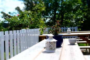 YHA Conwy : Backyard
