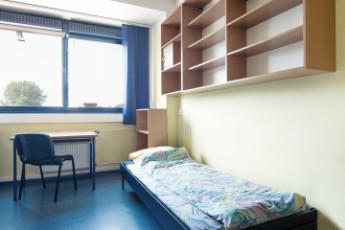 Warsaw - Dizzy Daisy Hostel :