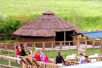 Albergue Paradiso : Farm at Albergue Paradiso hostel
