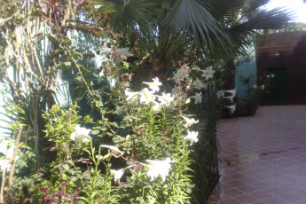 Tetouan Martil Youth Hostel :