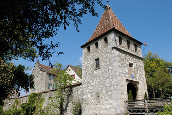 Dachsen am Rheinfall Youth Hostel : Talamone hostel in Switzerland hall