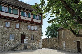 Dachsen am Rheinfall Youth Hostel : badgers hostel in Switzerland outside courtyard