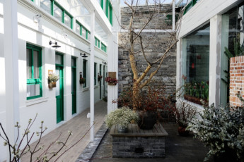 Peking Station Hostel : yard