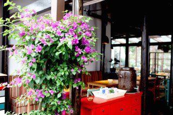Hangzhou - Hofang International YH : Chinese Restaurant 2