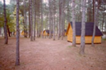 Campamento Juvenil Los Palancares :