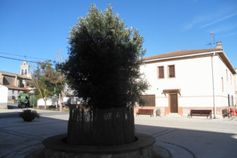 Albergue Juvenil Ailanto (Legaria) :