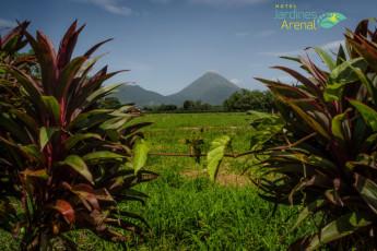 La Fortuna - Jardines Arenal : Jardines Arenal