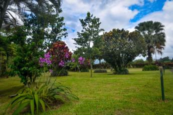 La Fortuna - Jardines Arenal : Jardin