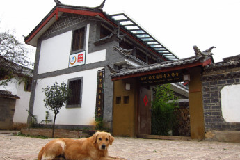 Lijiang Baisha There International Youth Hostel :