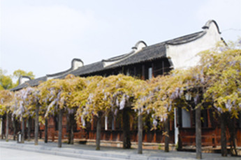 Wuzhen Wisteria Youth Hostel :