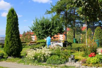 Oslo Haraldsheim : Haraldsheim barbeque