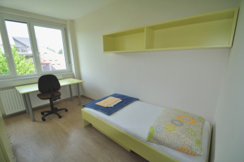 Youth Hostel Novo mesto : Mesto 2