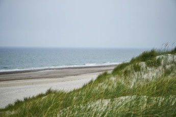 Danhostel Henne Strand : X60444,henne strand hostel image (9)