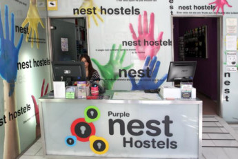Valencia – Purple Nest Hostel : purple nest reception