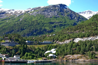 Hellesylt : la naturaleza local cerca del hostal Hellesylt en Noruega