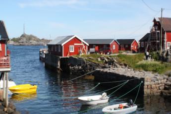 Lofoten Å : un mar ballenas