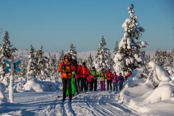 Saariselkä - Hostel Ahopää : Skiing