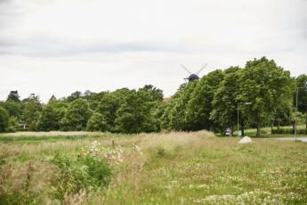Danhostel Langeland : X60458,Langeland hostel image (11)