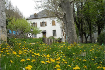 Albergue Quinta Vista Alegre :