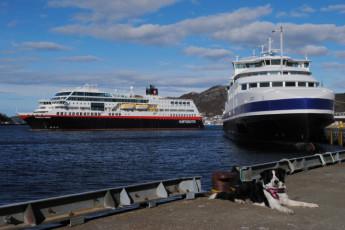 Bodø : Bodø port