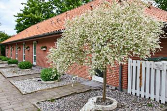 Danhostel Nykobing Falster : X60450,Nykobing Falster hostel image (11)