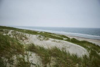Danhostel Henne Strand : X60444,henne strand hostel image (8)