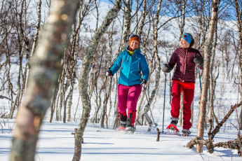 Abisko Mountain Station : Snow shoe hike
