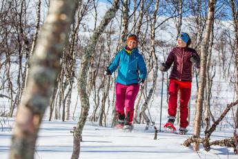 Abisko Mountain Station : Snow shoe hike