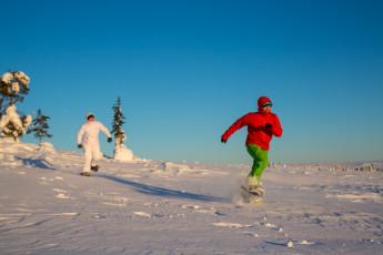 Saariselkä - Hostel Ahopää : Snowshoeing