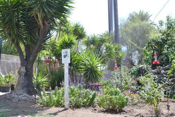 HI - Los Angeles - Fullerton : garden