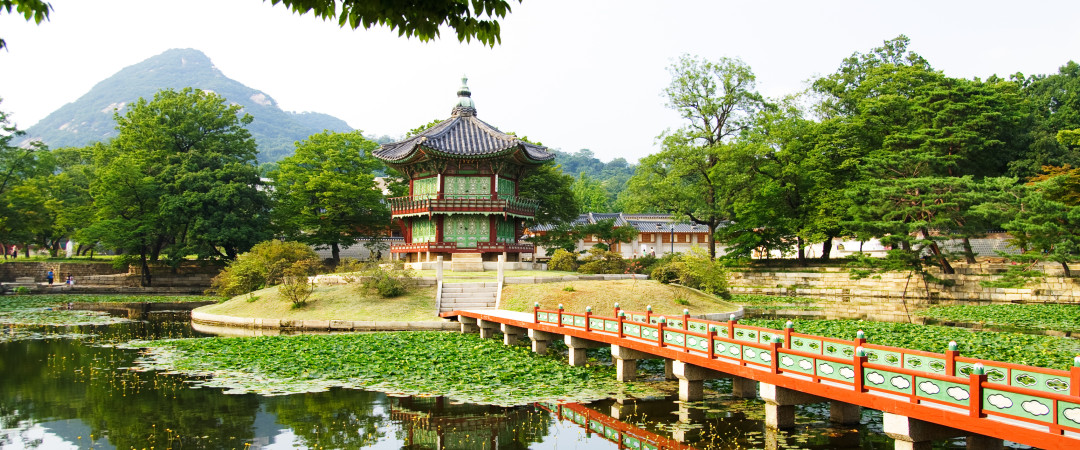 Walk from our hostel to the wondrous Korean palaces - home to kings and the government with ornate features and beautiful gardens.