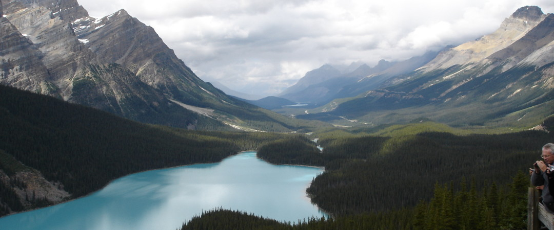 Be dazzled by Banff National Park which offers beautiful views of the alpine meadows and Peyote Lake.