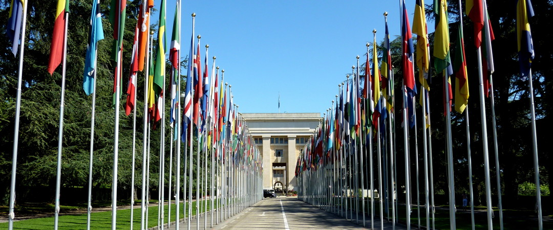 Avenue de la Paix, home of the Geneva United Nations Office, is a short walk away from the hostel and will make for an unforgettable visit.